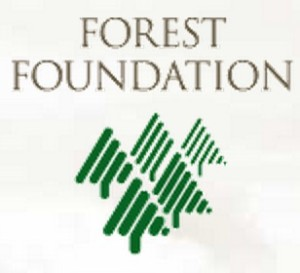 Forest_Foundation